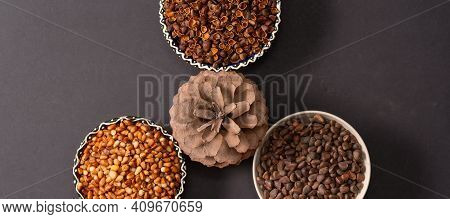 A Pine Cone Surrounded By Three Round Bowls Of Pine Nuts: Peeled Grains, Shells And Left Nuts. Top V