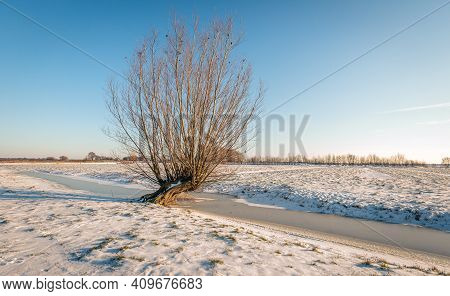 Backlit Image Of A Wide Winter Landscape In The Netherlands. The Land Is Covered With A Thick Layer