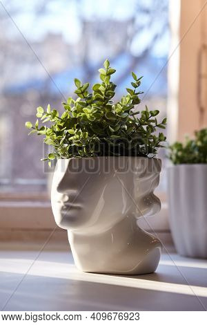 Vase In The Shape Of A Face With Greenery