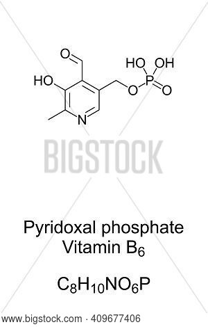 Pyridoxal Phosphate, The Active Form Of Vitamin B6, Chemical Formula And Skeletal Structure. Also Kn