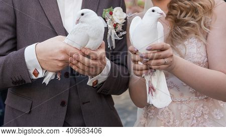 Close Up. White Doves In The Hands Of The Newlyweds.