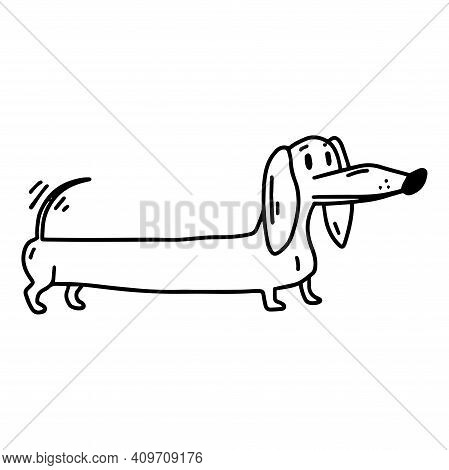 Dachshund. Nice Dog. Coloring. Doodle Icon. Vector Illustration Of A Dog. Editable Element.