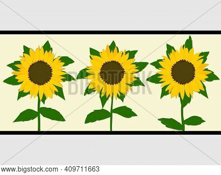 Trio Of Hand Drawn Yellow Sunflowers With Leafs And Stem Over Light Yellow Panel With Black Frame On