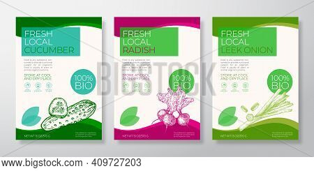 Fresh Local Vegetables Label Templates Set. Vector Packaging Design Layouts Collection. Typography B