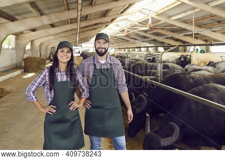 Young Smiling Woman And Man Farmers Or Farm Workers In Aprons And Caps Standing Near Bulls Stalls