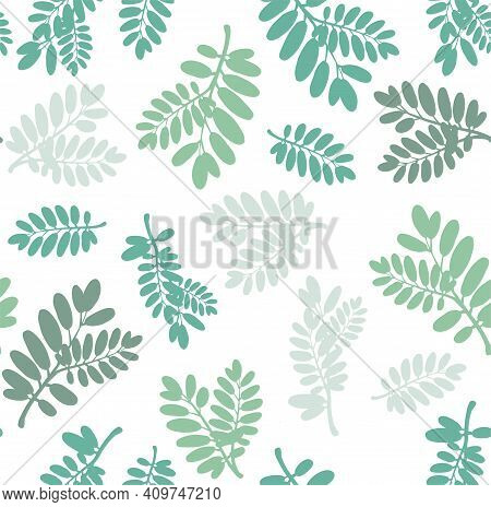 Sketch Botanical Illustration. Leaves And Plants Varied In Shape. Can Be Used For Greeting Cards, Te