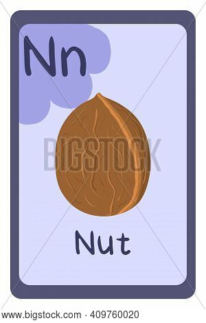 Colorful Abc Education Flash Card, Letter N - Nut In Shell, Walnut. Alphabet Vector Illustration Wit