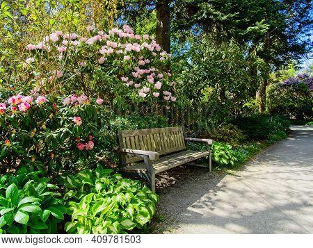 Finnerty Gardens Blooms