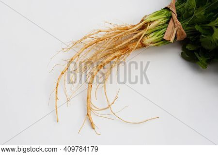 Fresh Coriander Root On A White Background.