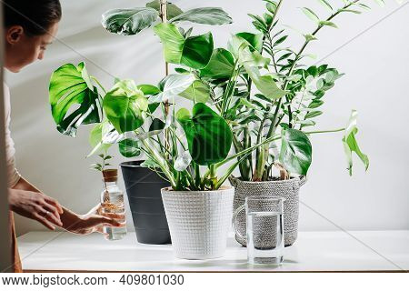 Gentle Woman Adding Seedling To Her Mini Garden With Big Potted Plants