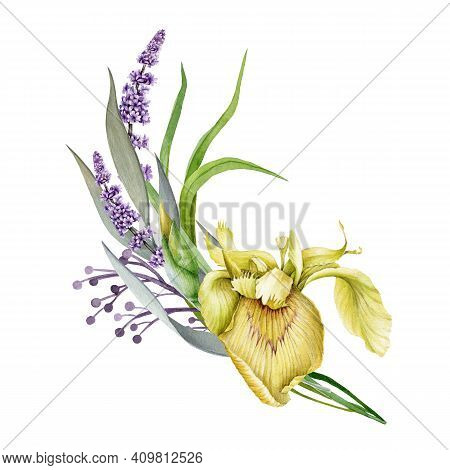 Lavender, Yellow Garden Iris And Wild Meadow Flowers Watercolor Design Spring Bouquet. Meadow Grass