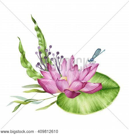 Pink Lotus And Lush Wild Meadow Flowers Watercolor Design Spring Bouquet. Lotus With Dragonfly. Flor