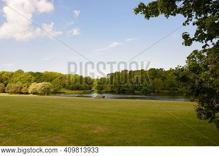 Beautiful View Of A Lake In The Distance Surrounded By The Lush Green Trees Of The Forest. Wonderful