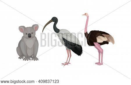Koala Bear And Emu Bird As Australian Animals Vector Set