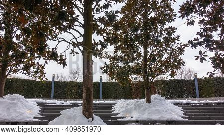 Winter In The City Park. Snowdrifts Lie On The Stone Steps. Trees With Yellowed Leaves Against A Pal