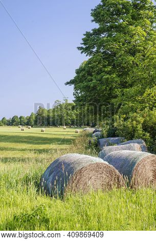 Freshly Made Hay Bales Dot The Landscape Of A Farm In Liberty Grove Township, Door County, Wisconsin