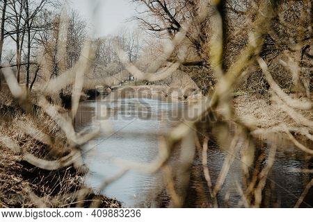 Forest River Water Reflection Landscape Through Tree Branches. River Forest Scene. Forest River Refl