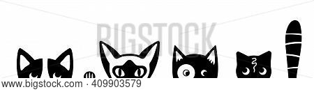 Funny Cat Faces On White Background. Tricky Kittens Peeking Out Of The Bottom Of The Page. Kitty Ban