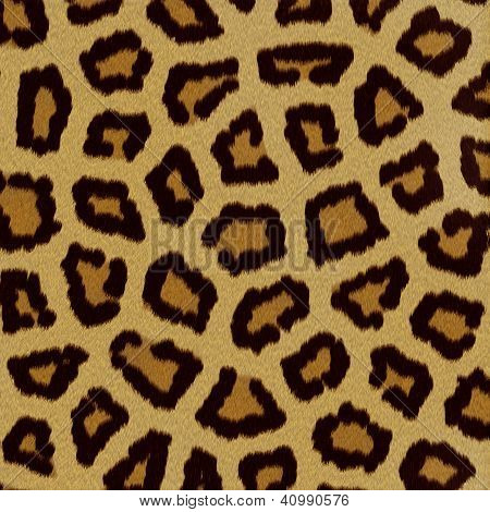 Leopard Fur (skin) Background Or Texture