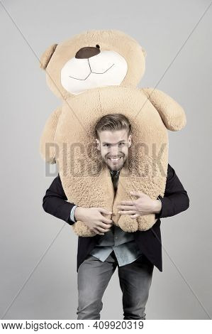 Man Carries Giant Teddy Bear On Neck, Grey Background. Birthday Gift Concept. Teddy Bear Plush Toy P