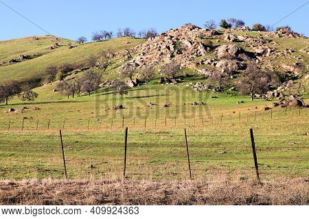 Rustic Windswept Fence Surrounding Lush Grasslands On A Ranch With Livestock Taken At A Prairie In T