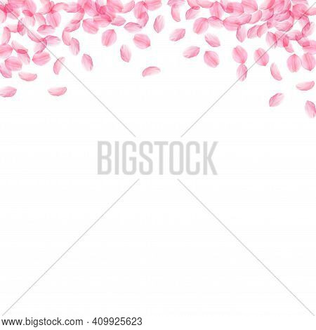 Sakura Petals Falling Down. Romantic Pink Silky Medium Flowers. Thick Flying Cherry Petals. Square T