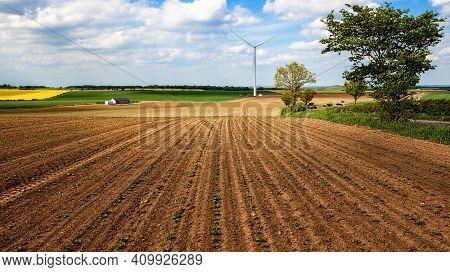 Wind turbine in a farmland landscape