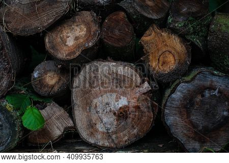 Background Of Cut Down Trees. Close-up Of Pile Of Cut Down Logs. Heap Of Different Sized Timbers In
