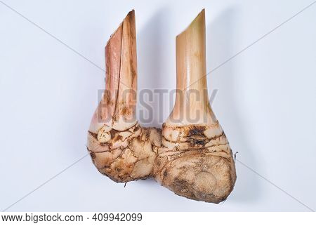 Top View Of Fresh Galangal Isolated On White Background