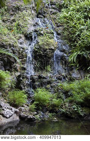 Tranquil And Peaceful Gentle Waterfall In Tropical Jungle