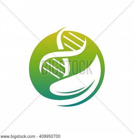 Nature Dna Helix Logo Designs Concept Vector
