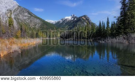 Coniferous trees by the lake in front of Canadian rocky mountains with reflections of the trees and and mountains in the lake
