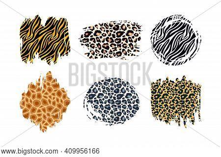 Hand Drawn Vector Leopard, Zebra, Cheetah, Tiger And Giraffe Textured Ink Brush Strokes Artistic Bac