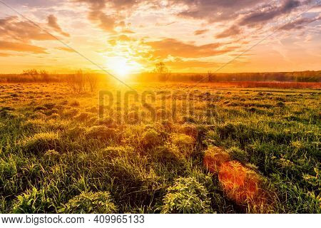 Sunrise In A Spring Field With Green Grass, Lupine Sprouts, Fog On The Horizon, Cloudy Sky.