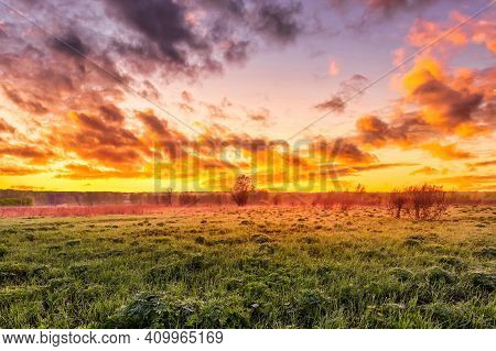Twilight In A Spring Field With Green Grass, Lupines, Fog On The Horizon, Cloudy Sky.