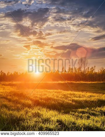 Sunrise Or Sunset In A Spring Field With Green Grass Covered With A Dew, Fog, Birch Trees And Coudy