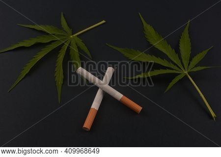 Hemp Leaves And Cigarettes Close-up.