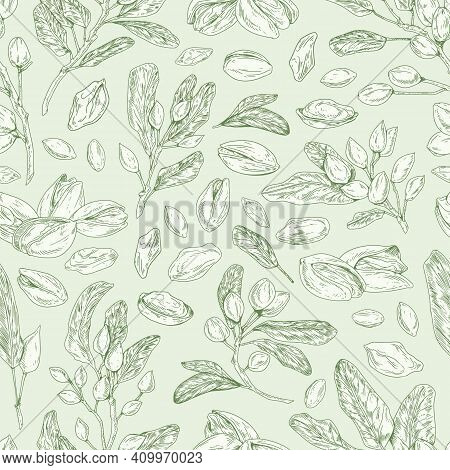 Seamless Pistachio Pattern With Nuts, Shells, Branches And Leaves. Monochrome Design Of Endless Mono