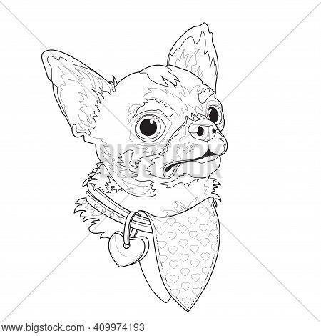 Dog Breed Chihuahua. Funny Linear Cartoon Character. Animal Domestic. Vector.