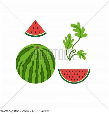 National Watermelon Day On August 3 In The United States. Set Round Ripe Watermelon, Slice Of Waterm