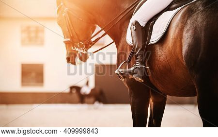 A Beautiful Bay Horse With A Rider In The Saddle Is Trotting On A Sandy Outdoor Arena, And Another R