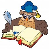 Writing owl teacher with blue cap - vector illustration. poster