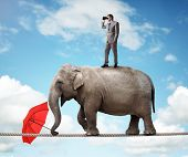 Businessman standing on top of elephant balancing on a tightrope looking through binoculars concept for business vision, conquering adversity or looking to the future poster