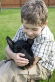 Eight-year old boy with his pet on the lawn. Close-ip poster
