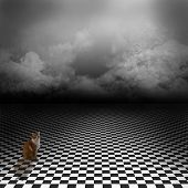 Ginger cat sitting in empty, dark, psychedelic image with black and white checker floor on the ground and ray of light in cloudy, dark sky. Gothic, drama background for poster or wonderland image. poster