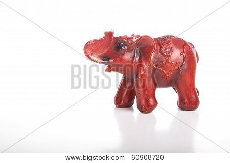 Elephant, Isolated On White Background
