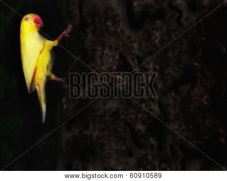 Painting of a yellow parakeet bird clinging to a treetrunk