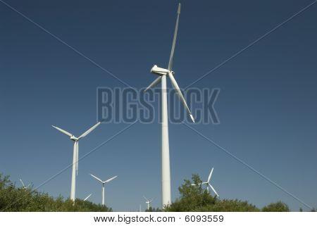 Wind Turbine In Canada