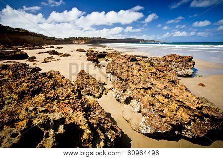 Coastal scene at Anglesea, Victoria poster