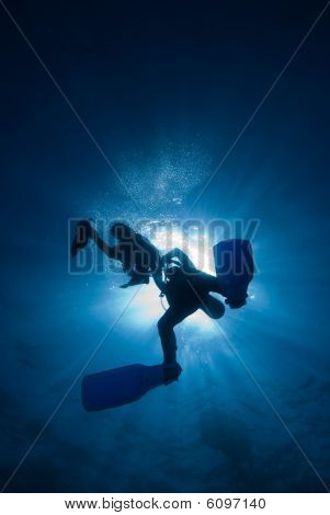 Silhouette of divers close to the surface
